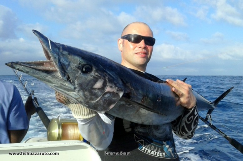 We have had some amazing wahoo fishing the last three years and August to September was incredible. We then caught them here and there throughout the Season but in late November they once again appeared in good numbers and size for a few days!