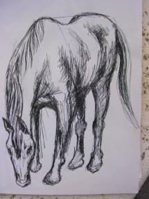 horse neck