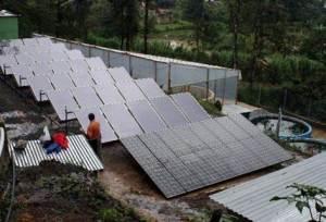 Solar energy in tilapia farm (Guatemala) 2
