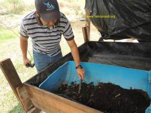 Guatemala - earthworms in composting (02)