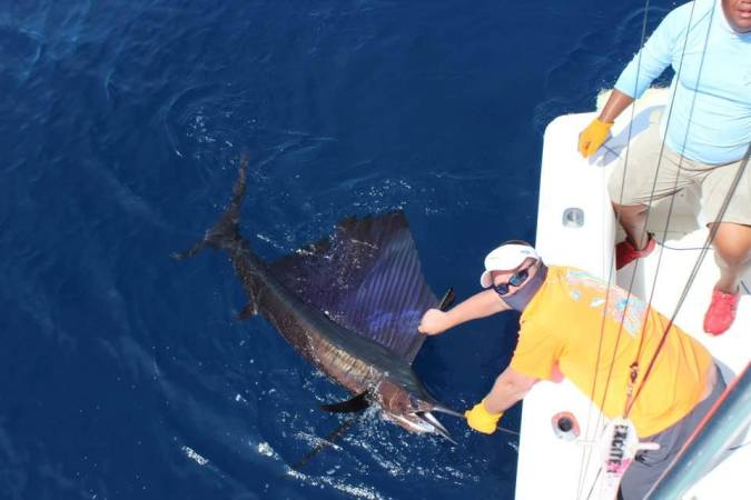Costa Rica Sailfish Season