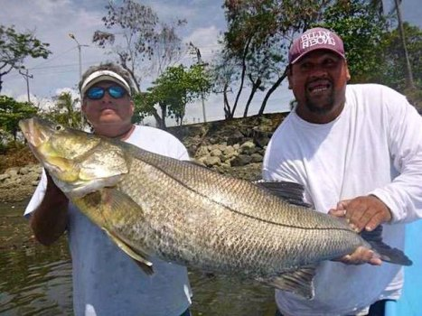 Costa Rica Snook Fishing