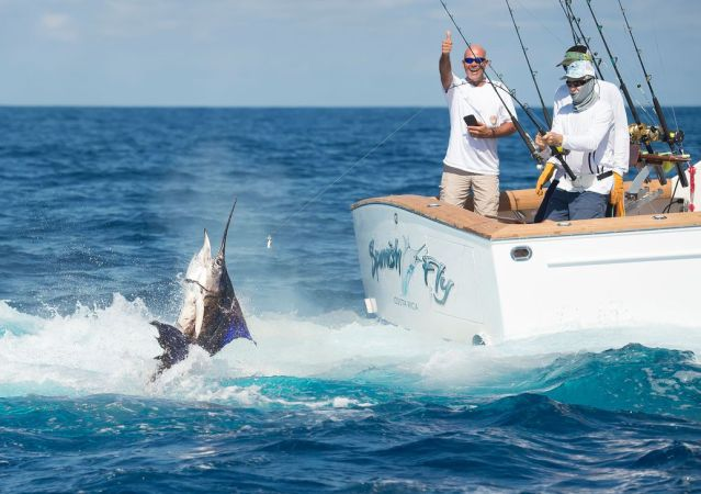 Sailfish Archives – FECOP - Costa Rica Sport Fishing Tourism