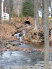 Where Green Brook flows into Furnace Creek (10/27/12)