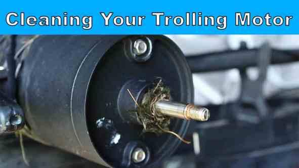 clean a trolling motor