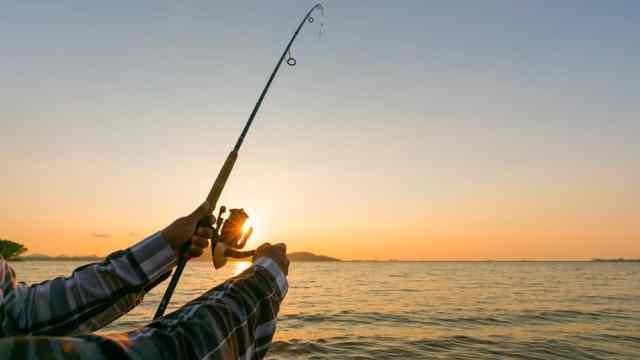 Sea Bass Best Rods