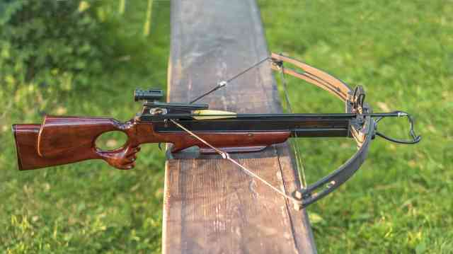 Cross Bow or Bow which is better for survival