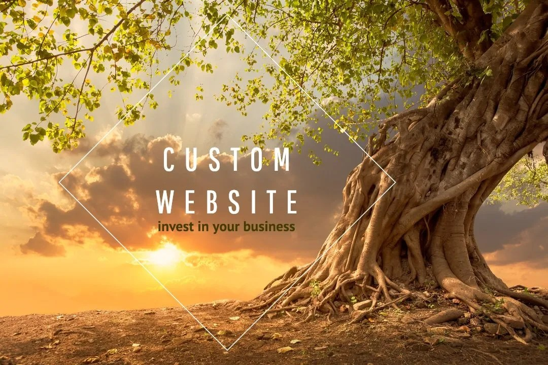 Why A Custom WordPress Site Is Worth the Investment