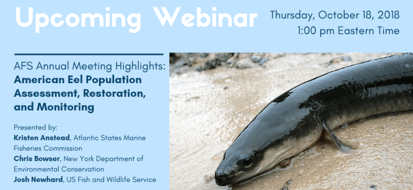 """<a href=""""https://fisheries.org/2018/09/annual-meeting-highlights-webinar-american-eel-population-assessment-restoration-and-monitoring-on-october-18/"""">Upcoming Webinar</a> slide"""