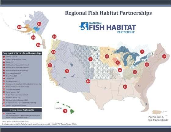 Map of NFHP partnerships.