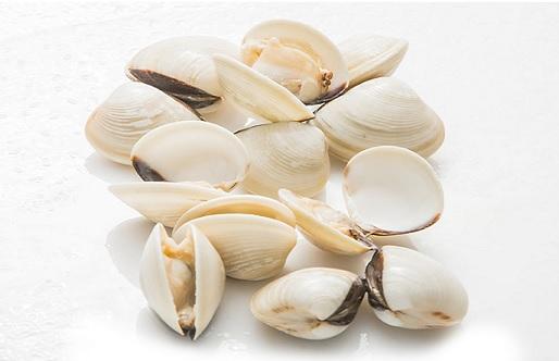 clams 11