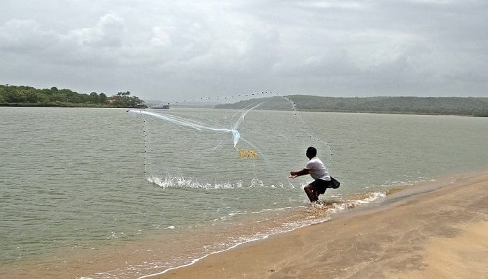 How to Throw a Cast Net Step by Step?   Easy Casting Guide for Beginners