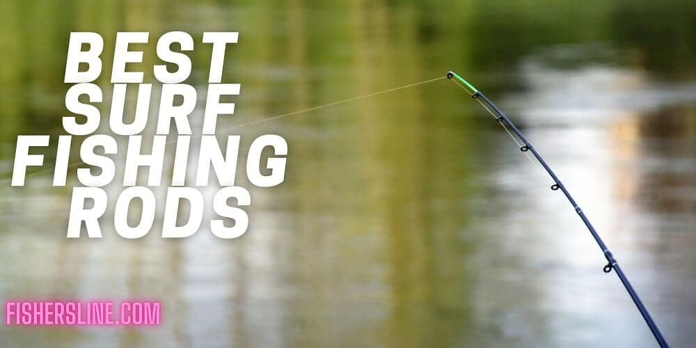 fishing-rod-near-lake