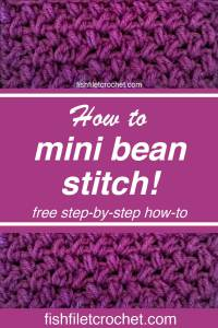 Mini Bean Pinterest pic