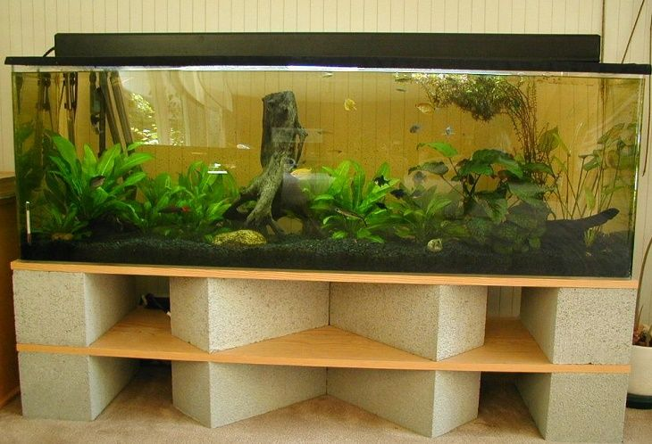Best Aquarium Stand Review