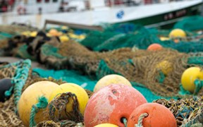 Fishing industry stands to gain hugely from Brexit