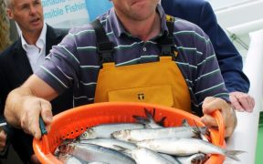 SCOTS MACKEREL AND HERRING FISHERS ARE AT THE FOREFRONT OF SUSTAINABILITY