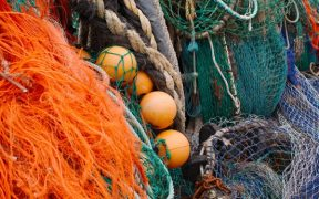 GOVERNMENT URGED TO INVEST IN NI FISHING SECTOR