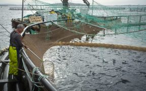 NORWAY TO EXPORT FISH FARMING EQUIPMENT