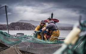 SCOTTISH SALMON FARM SCALES UP WITH HSBC UK INVESTMENT