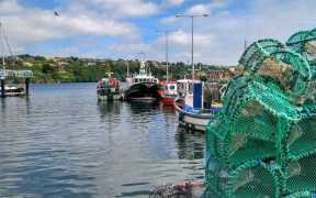 ASIA SECOND BIGGEST EXPORT MARKET FOR IRISH SEAFOOD