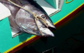 LIMIT FOR NZ BLUEFIN TUNA FISHERY