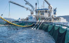 SALES AGREEMENT FOR AKVA AND FLATSETSUND ENGINEERING