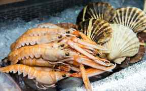 DEMAND FOR SCOTTISH SEAFOOD CONTINUES