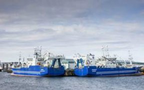 ICELANDIC BLUE WHITING SEASON COMES TO AN END