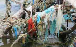 NEW STUDY HIGHLIGHTS PLASTIC DAMAGE TO THE OCEANS