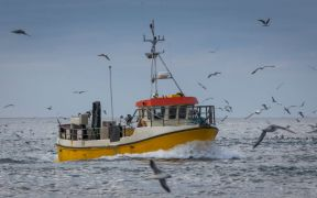 EC SAYS BALTIC COD