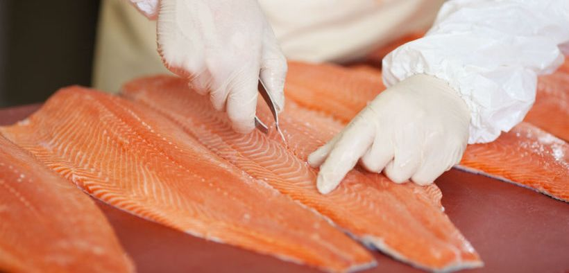 Cutting Edge for Seafood Processors