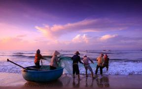 VIETNAM SEAFOOD SECTOR COMMITMENT