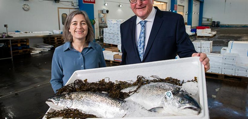 Salmon exports achieve record value of £618million