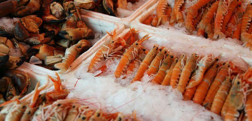 Seafood Expo North America postponed