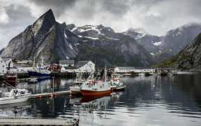 norwegian-seafood-exports-fall