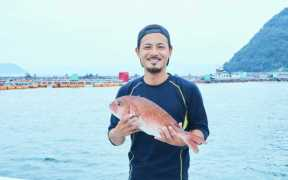 FIRST RED SEA BREAM AIP