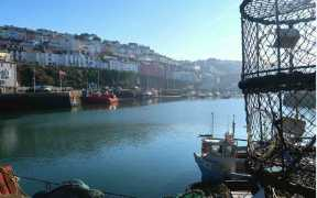 INSHORE FISHERIES REPORT