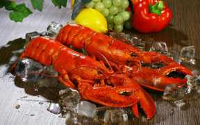 cooking-up-a-clam-bake-for-the-whole-family