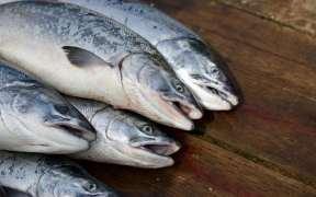 norway-dismisses-covid-salmon-rumours
