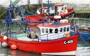 IRISH DISCUSS FISHERIES AND BREXIT