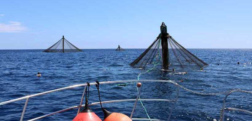 US FIRST AQUACULTURE OPPORTUNITY