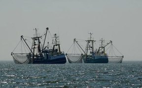 SeaBOS calls on governments to support boat crews