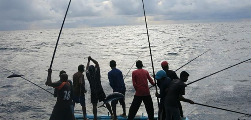 IPNLF and Earthworm Foundation strengthen collaboration in French tuna markets