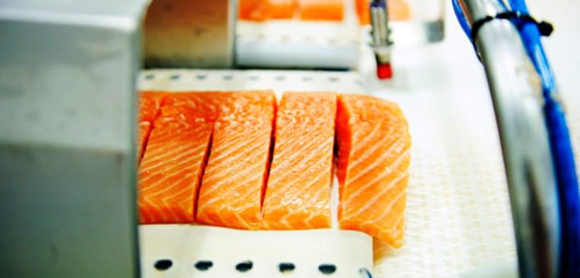 Norwegian salmon farming sees continued drop in antibiotics use