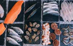 SEAFISH LAUNCHES 20 YEAR