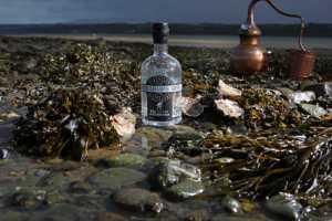 new-menai-oyster-gin
