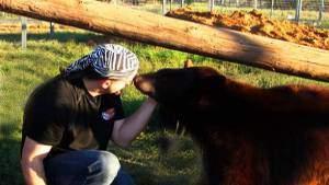 Black bear attacks on the rise?