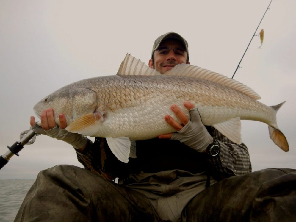 39-Bull-Redfish