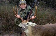 Bayside, TX Deer